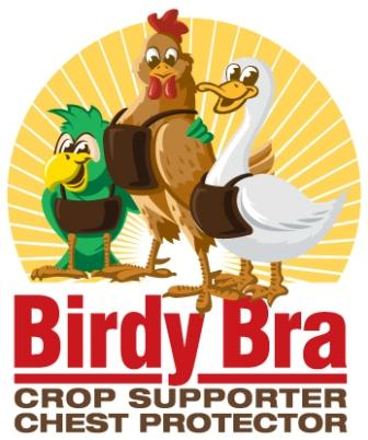 Birdy Bra Crop Suppoter Crop Bra And Chest Protector